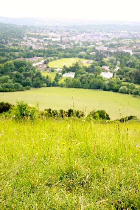 Box Hill 2