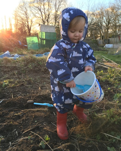 Lenny Allotment